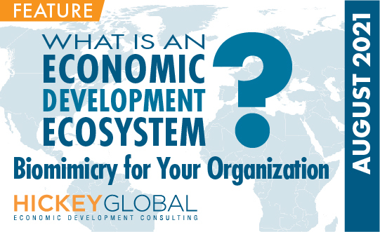 What is an Economic Development Ecosystem?